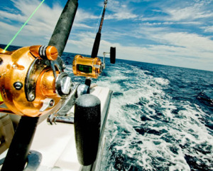 Deep Sea Fishing Charter at South Africa's West Coast.